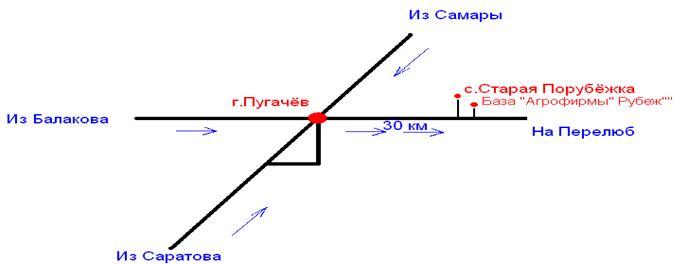 image3711